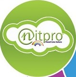 Nitpro Logo